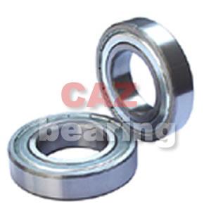 CAZ 6000 Series Bearing