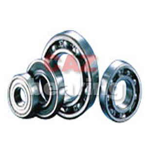CAZ 6900 Series Bearing
